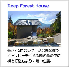 Deep Forest House